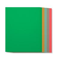 "2015-2017 In Color 8-1/2"" X 11"" Cardstock"