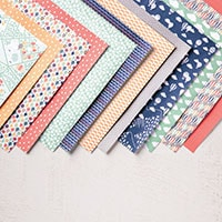 Carried Away Designer Series Paper