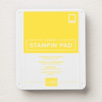 Pineapple Punch Classic Stampin' Pad