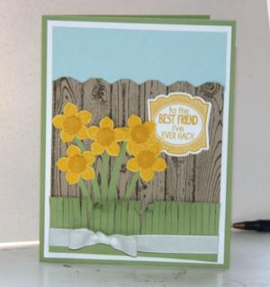 Petite Petals Daffodils